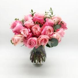 ISOLA DI SALINA: 25 rose rosa