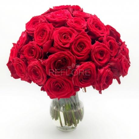 PASSIONE SENZA FINE: 50 rose rosse