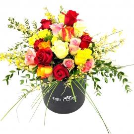 CAPPELLIERA NERA FANTASIA: rose miste colorate