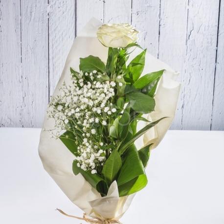 Rosa singola bianca