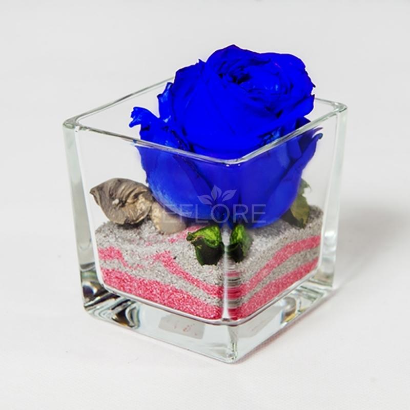 Rose stabilizzate in vari colori consegnate a torino e for Rosa dei mobili torino