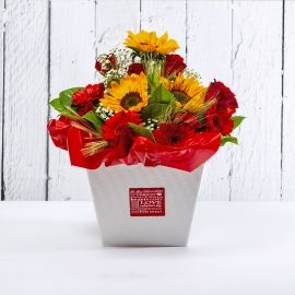 ANASTASIA: bouquet fresh rosso con girasoli rose e gerbere