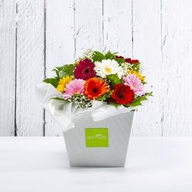 ELETTRA: bouquet fresh colorato con Gerbere e Gipsophila.