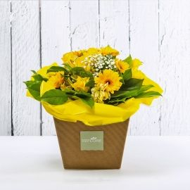 VIRGINIA: bouquet fresh giallo con rose e gerbere