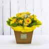 VIRGINIA: bouquet fresh giallo con Rose e Gerbere.