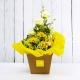 SOLE: bouquet fresh giallo con Lisianthus e Gerbere.