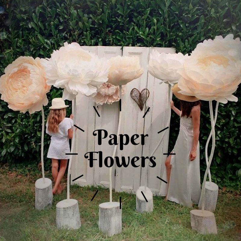 reflore-fiori-di-carta