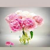 Sono arrivate le PEONIE!!!! Il fiore che sboccia solo tre mesi all'anno. Elegante e simbolo di prosperità e buon auspicio! Ordinali subito su 🌸🌸www.reflore.it 🌸🌸
