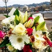 Ci sono fiori dappertutto per chi è capace di vederli. La magia dei fiori...🌻🌺🌹🌸