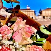 Benvenuta primavera... 🌹💐🌺🌻🌷🌼💐 abbiamo bisogno di sole, cielo azzurro, fiori colorati e profumati... Guarda tutti i nostri colori su www.reflore.it