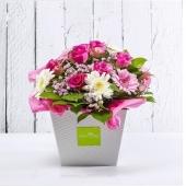 Ancora un giorno per scegliere i fiori più belli per la tua mamma! Guarda ora il catalogo e prenota la tua consegna 🌺link in bio🌺