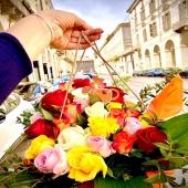 Un giorno pieno di colori!! Have a good day 🌹