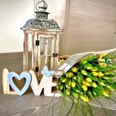 È la stagione dei tulipani, il fiore perfetto per esprimere emozioni senza dover usare parole. In generale, i tulipani sono sinonimo di primavera e amore. We love spring! Ordinali subito su 💐💐🌷www.reflore.it🌷💐💐